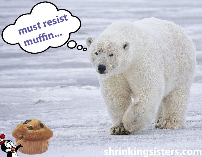 Polar bear chilly muffin