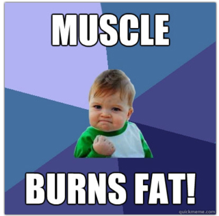 Muscleburnsfat