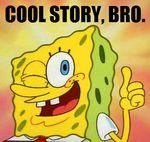 Sponge cool story bro