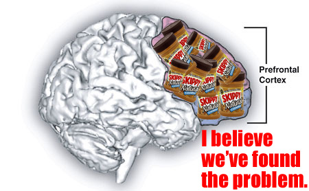 Prefrontal cortex filled with peanut butter