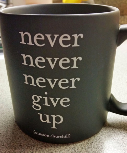 Never never never give up mug